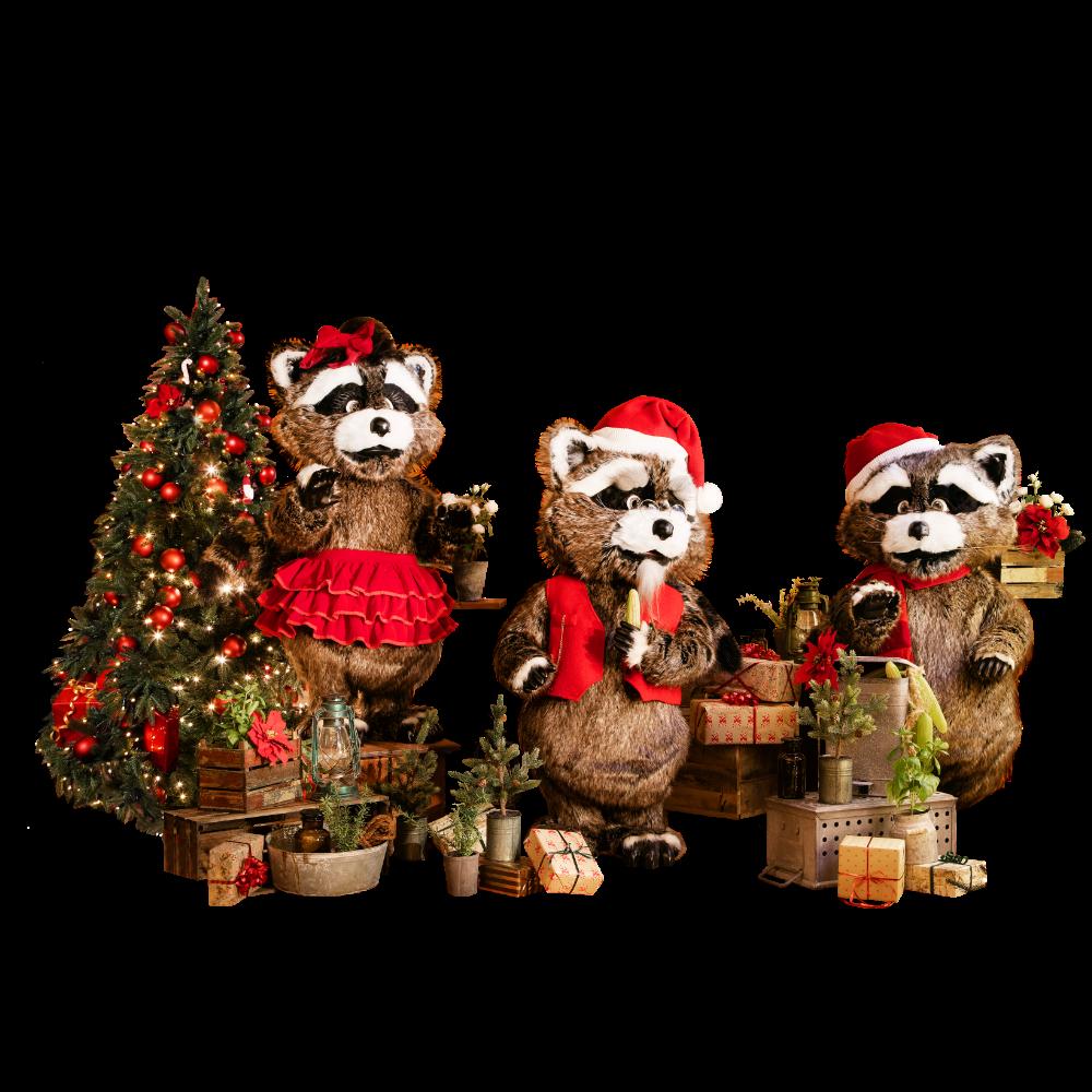 The Christmas Raccoon Band